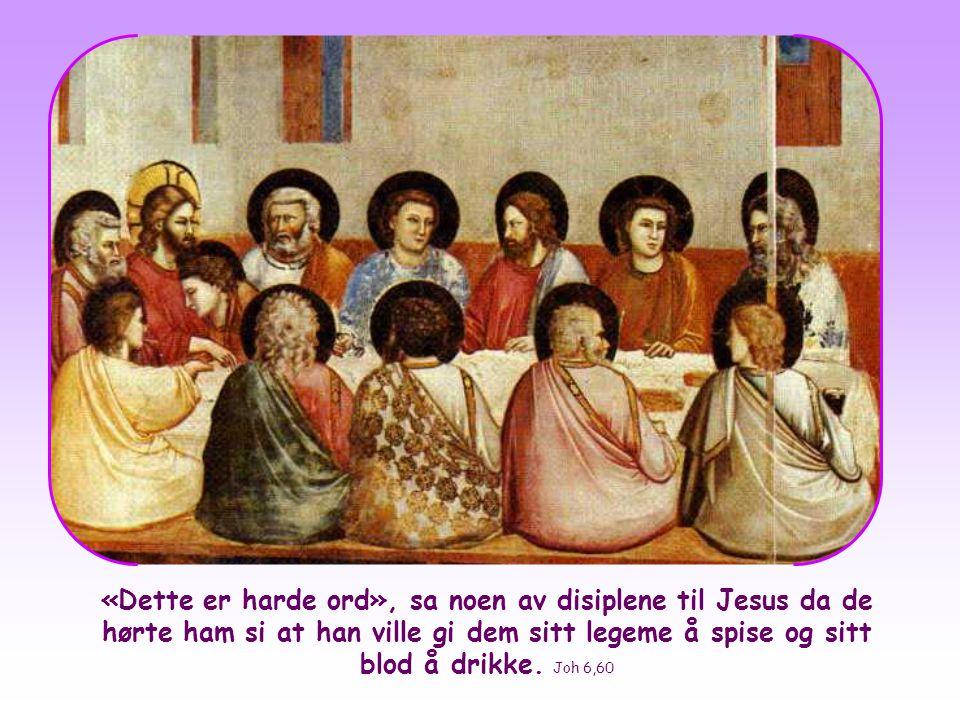 «Dette er harde ord», sa noen av disiplene til Jesus da de hørte ham si at han ville gi dem sitt legeme å spise og sitt blod å drikke.