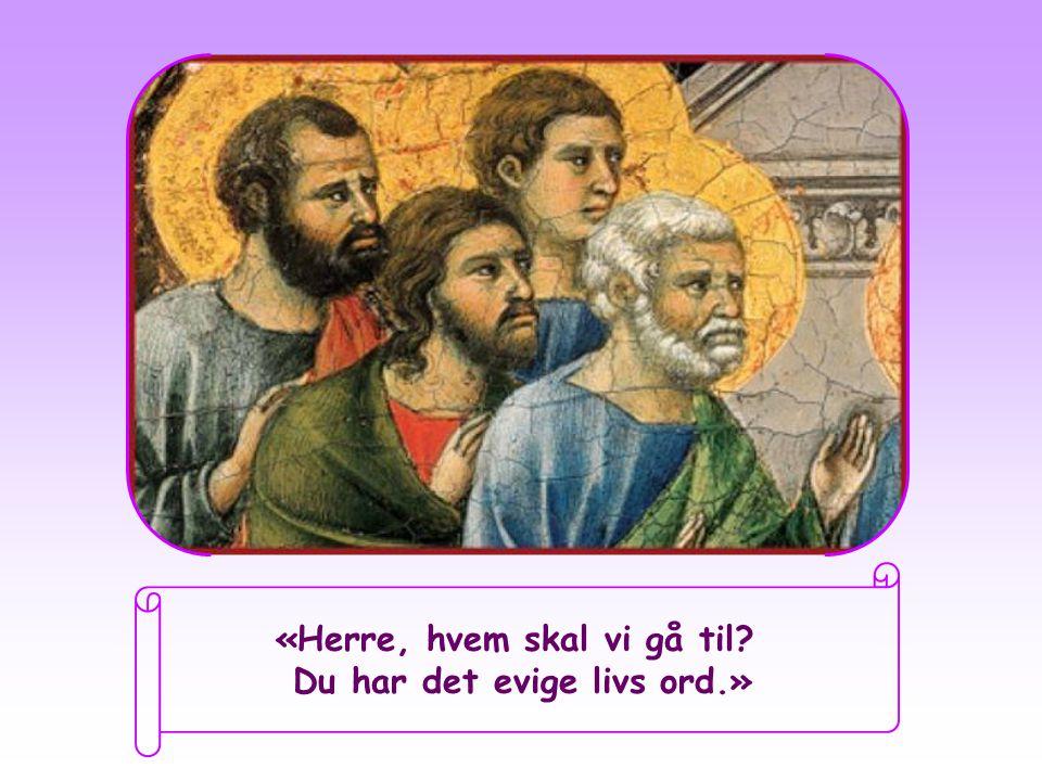 Da Jesus så at mange av disiplene trakk seg unna og ikke lenger fulgte ham, vendte han seg mot de 12 apostlene og sa: «Vil også dere gå bort?» Peter, som nå for alltid var overvunnet og fascinert av de ordene som han hadde hørt like fra den dagen da han traff Jesus, svarte på vegne av alle: Joh 6,67
