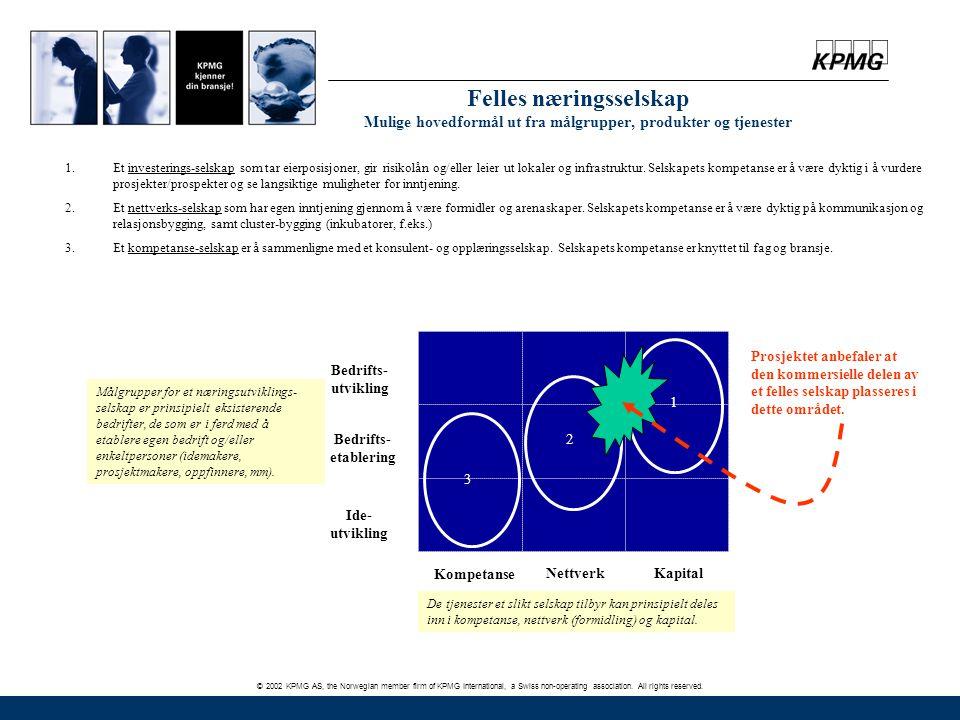 © 2002 KPMG AS, the Norwegian member firm of KPMG International, a Swiss non-operating association. All rights reserved. Felles næringsselskap Mulige