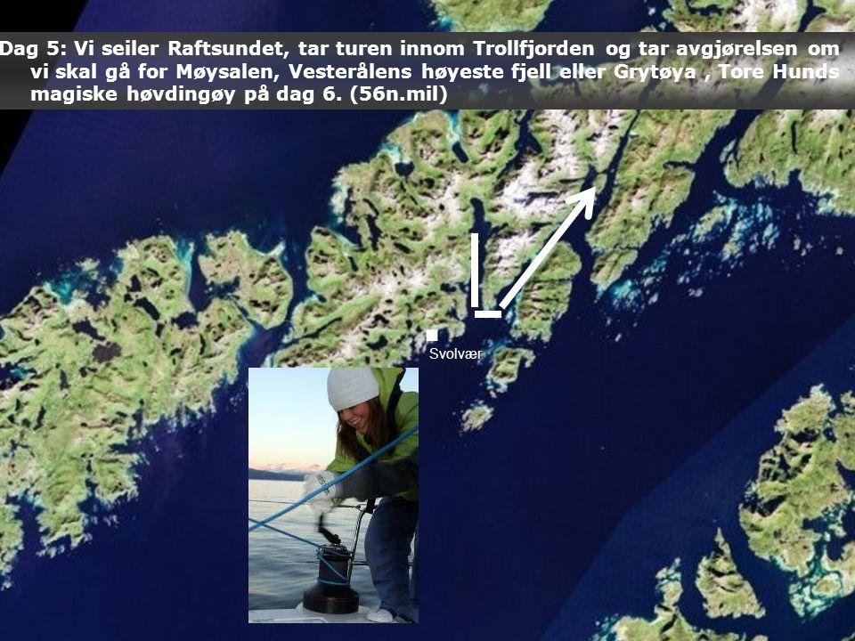 Svolvær Dag 5: Vi seiler Raftsundet, tar turen innom Trollfjorden og tar avgjørelsen om vi skal gå for Møysalen, Vesterålens høyeste fjell eller Grytøya, Tore Hunds magiske høvdingøy på dag 6.