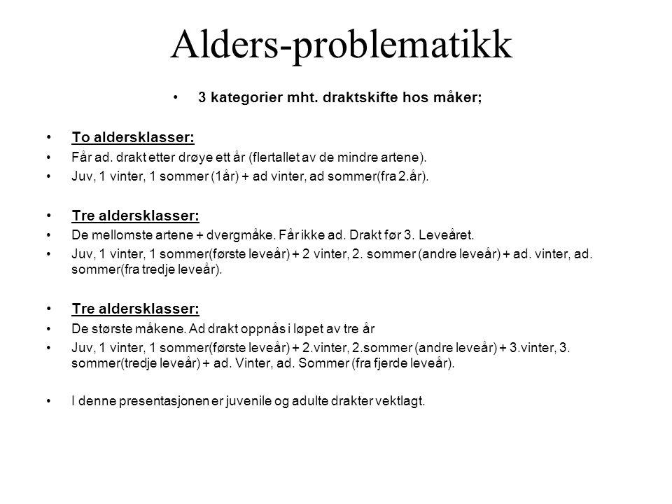 Alders-problematikk •3 kategorier mht.draktskifte hos måker; •To aldersklasser: •Får ad.