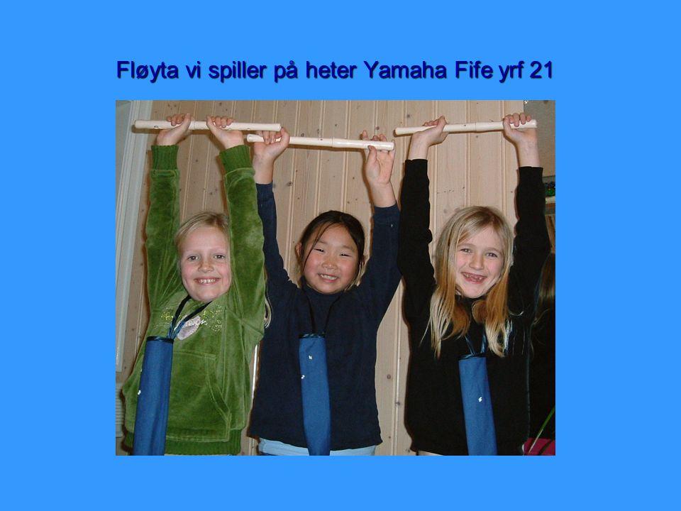 Fløyta vi spiller på heter Yamaha Fife yrf 21