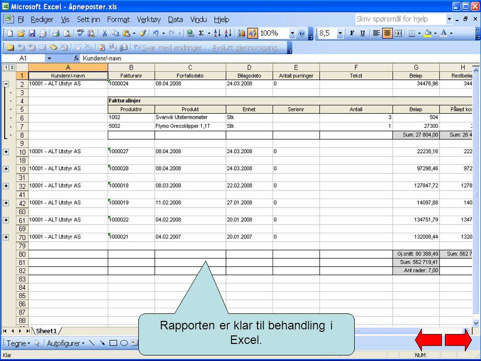 Rapporten er klar til behandling i Excel.