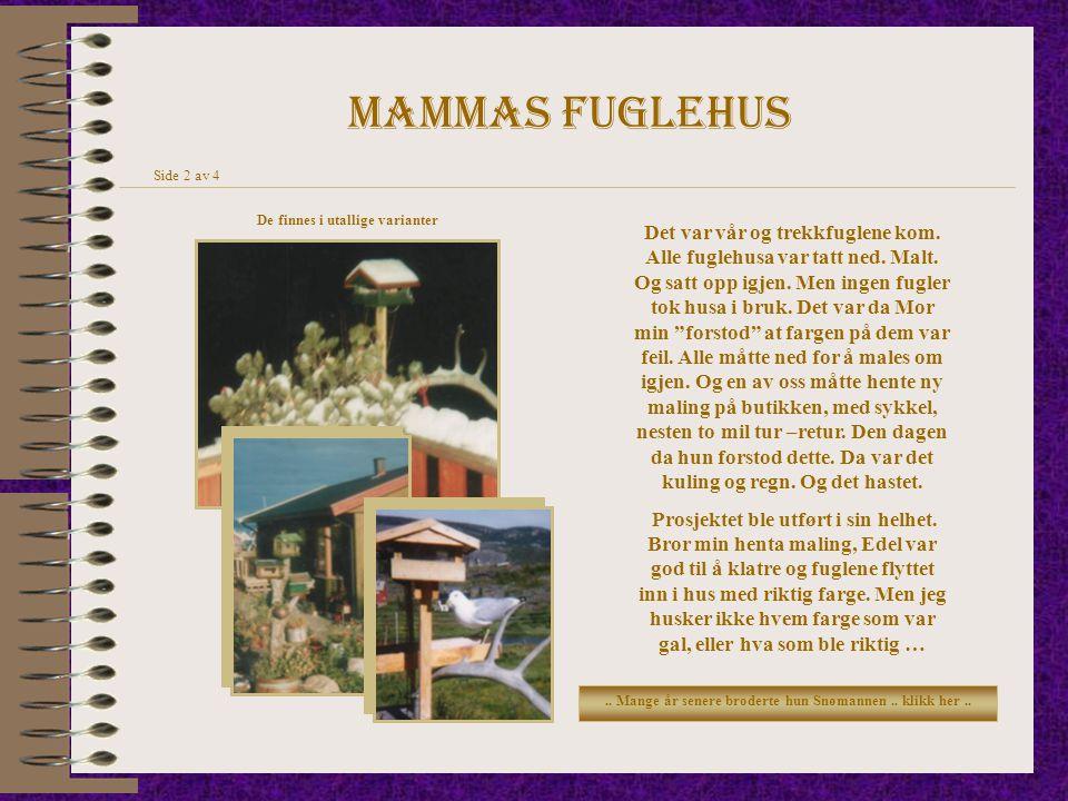 Mammas fuglehus De finnes i utallige varianter Side 2 av 4 Det var vår og trekkfuglene kom. Alle fuglehusa var tatt ned. Malt. Og satt opp igjen. Men