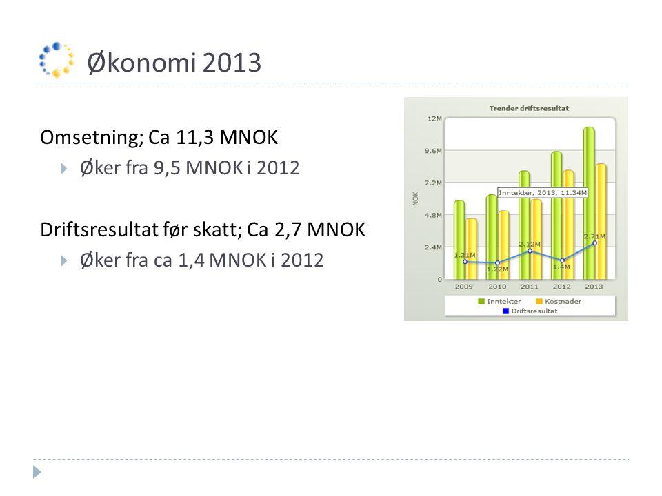 Økonomi 2013 Omsetning; Ca 11,3 MNOK  Øker fra 9,5 MNOK i 2012 Driftsresultat før skatt; Ca 2,7 MNOK  Øker fra ca 1,4 MNOK i 2012