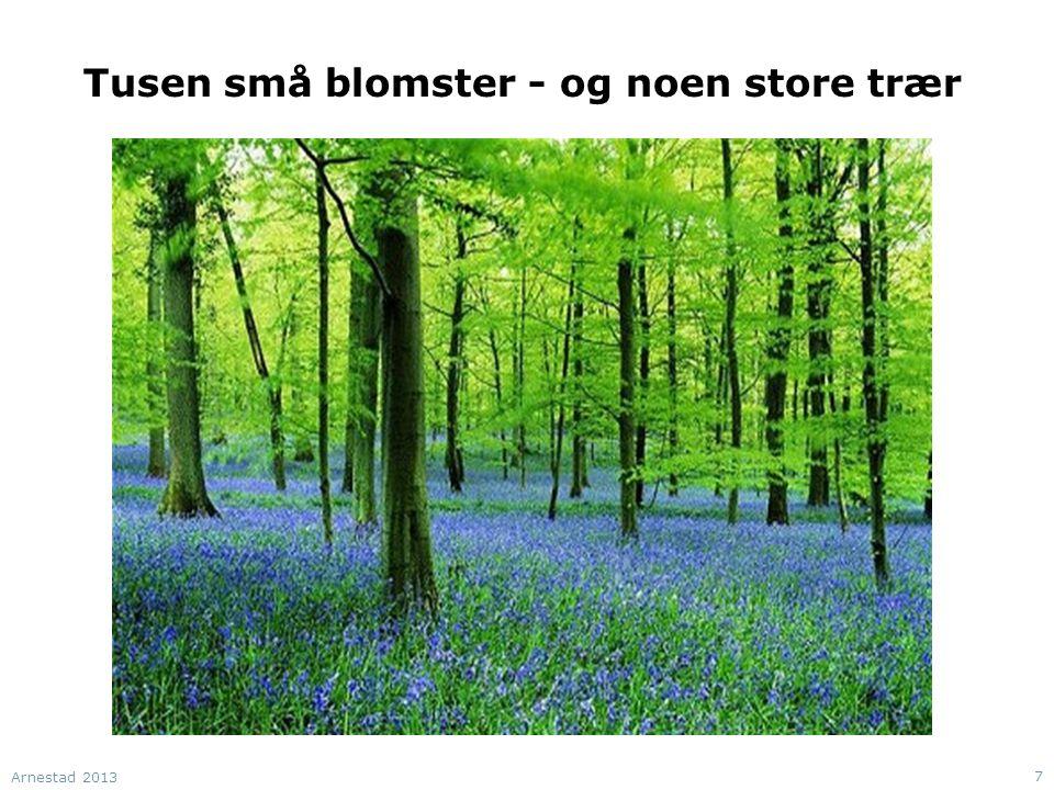 Tusen små blomster - og noen store trær Arnestad 2013 7