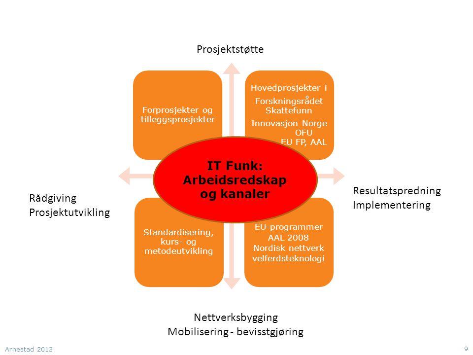 Rådgiving Prosjektutvikling Nettverksbygging Mobilisering - bevisstgjøring Prosjektstøtte Resultatspredning Implementering IT Funk: Arbeidsredskap og kanaler Arnestad 2013 9