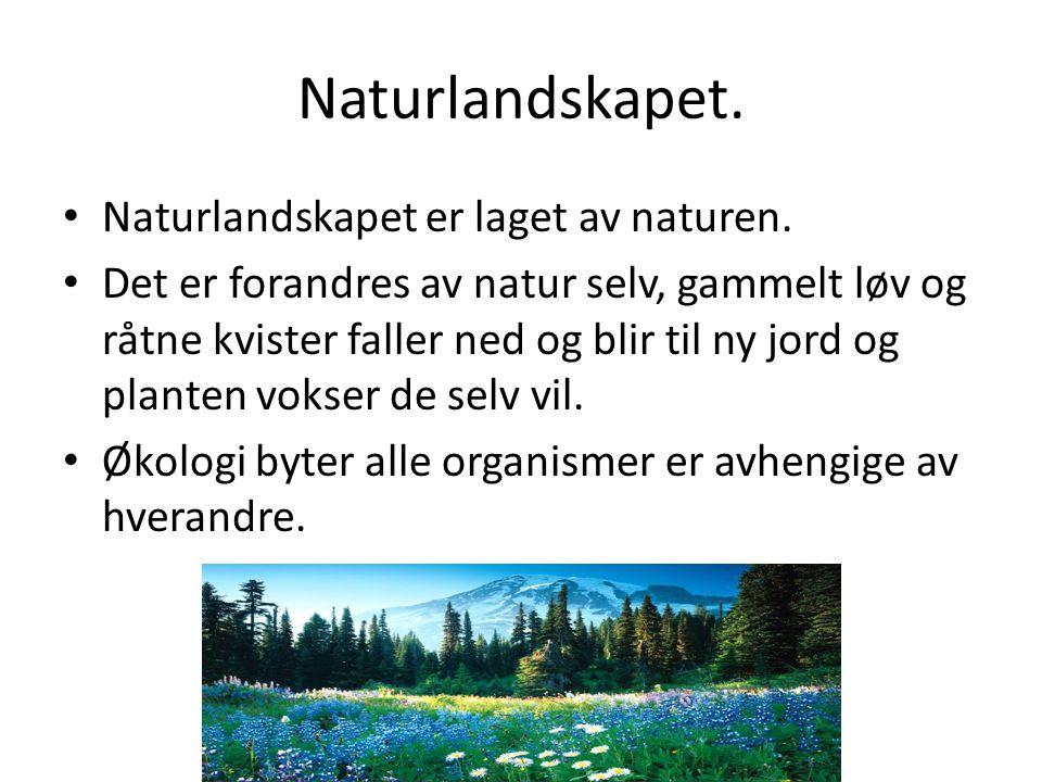Naturlandskapet.• Naturlandskapet er laget av naturen.