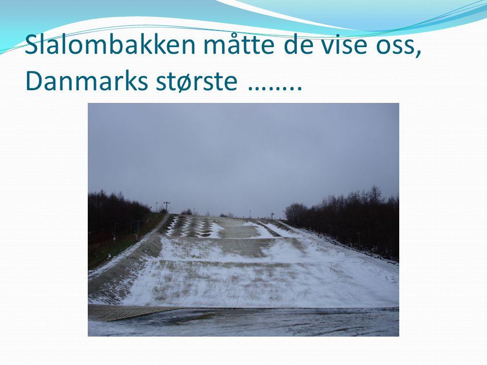 Slalombakken måtte de vise oss, Danmarks største ……..