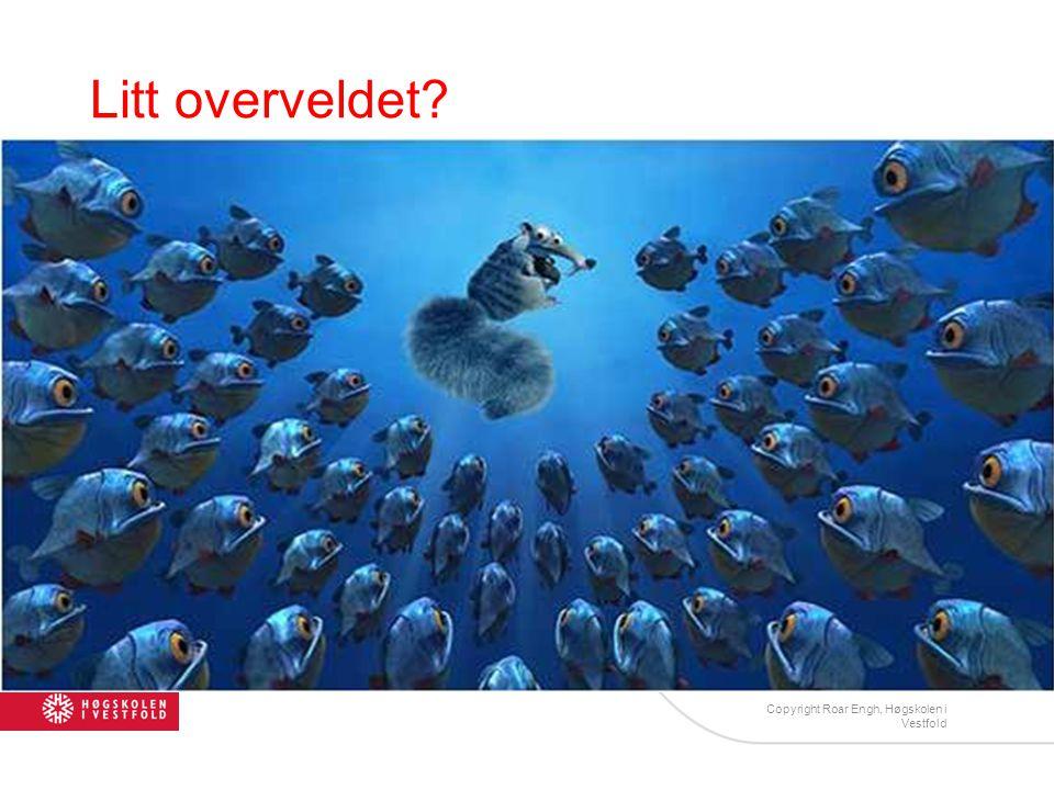 Litt overveldet? Copyright Roar Engh, Høgskolen i Vestfold