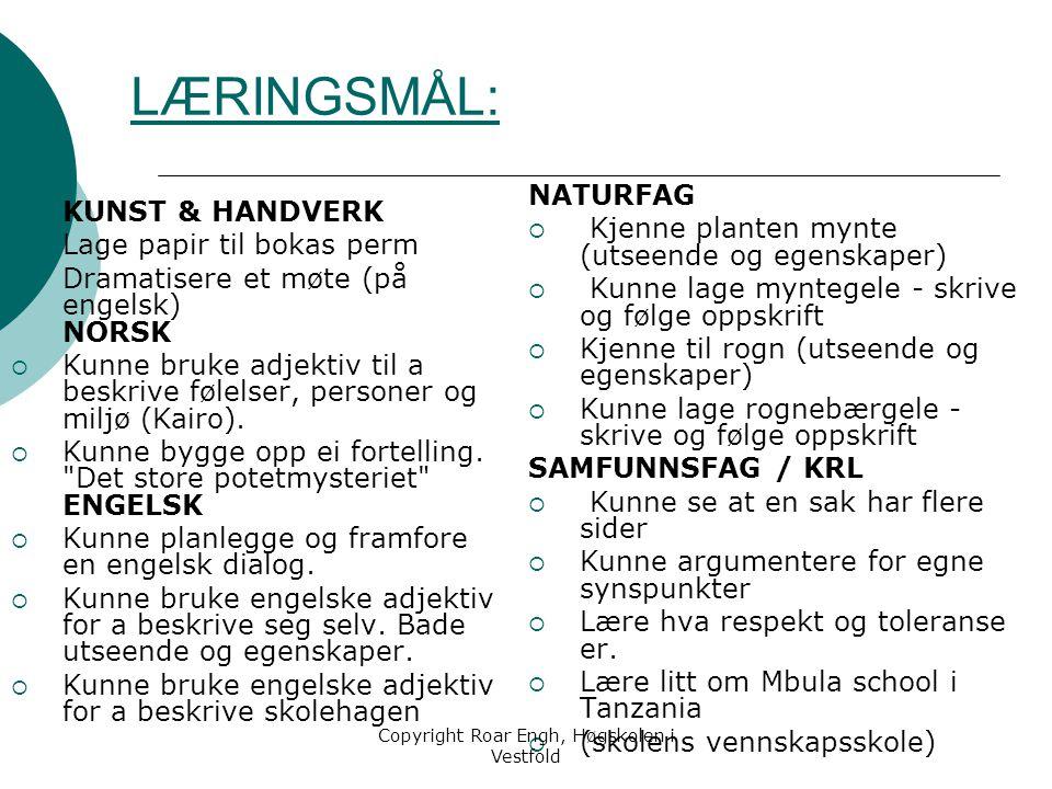 LÆRINGSMÅL: KUNST & HANDVERK  Lage papir til bokas perm  Dramatisere et møte (på engelsk) NORSK  Kunne bruke adjektiv til a beskrive følelser, pers