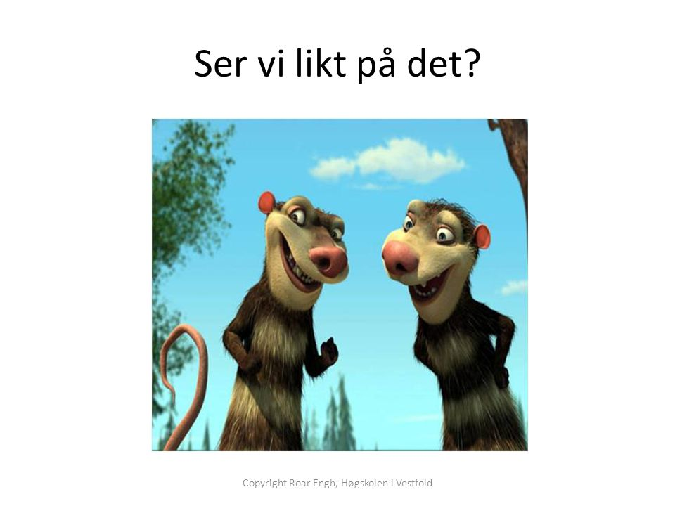 Ser vi likt på det? Copyright Roar Engh, Høgskolen i Vestfold