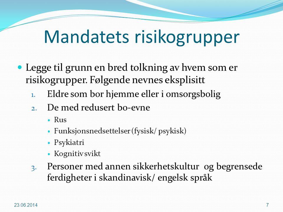 Mandatets risikogrupper  Legge til grunn en bred tolkning av hvem som er risikogrupper. Følgende nevnes eksplisitt 1. Eldre som bor hjemme eller i om