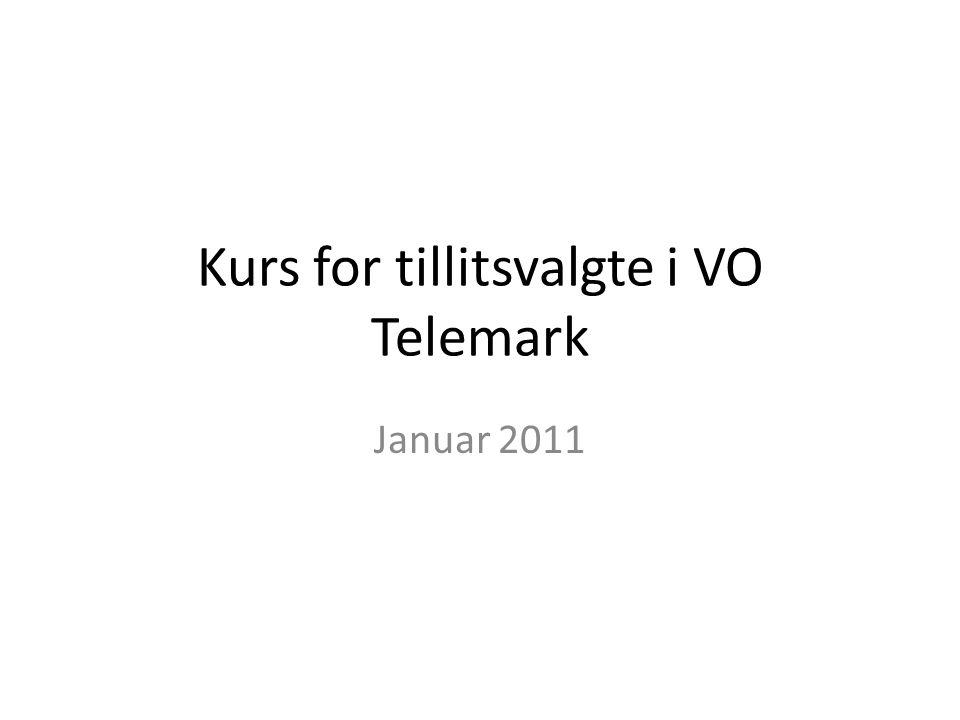 Kurs for tillitsvalgte i VO Telemark Januar 2011