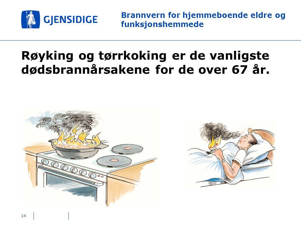14 Brannvern for hjemmeboende eldre og funksjonshemmede Røyking og tørrkoking er de vanligste dødsbrannårsakene for de over 67 år.