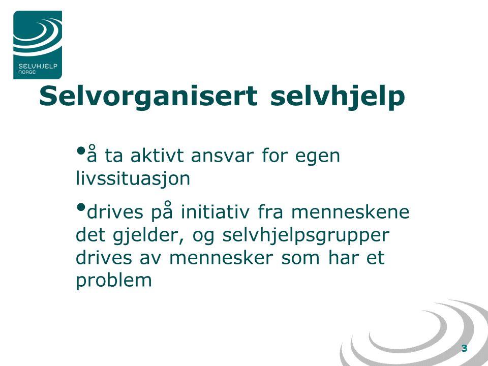 3 Selvorganisert selvhjelp • å ta aktivt ansvar for egen livssituasjon • drives på initiativ fra menneskene det gjelder, og selvhjelpsgrupper drives av mennesker som har et problem