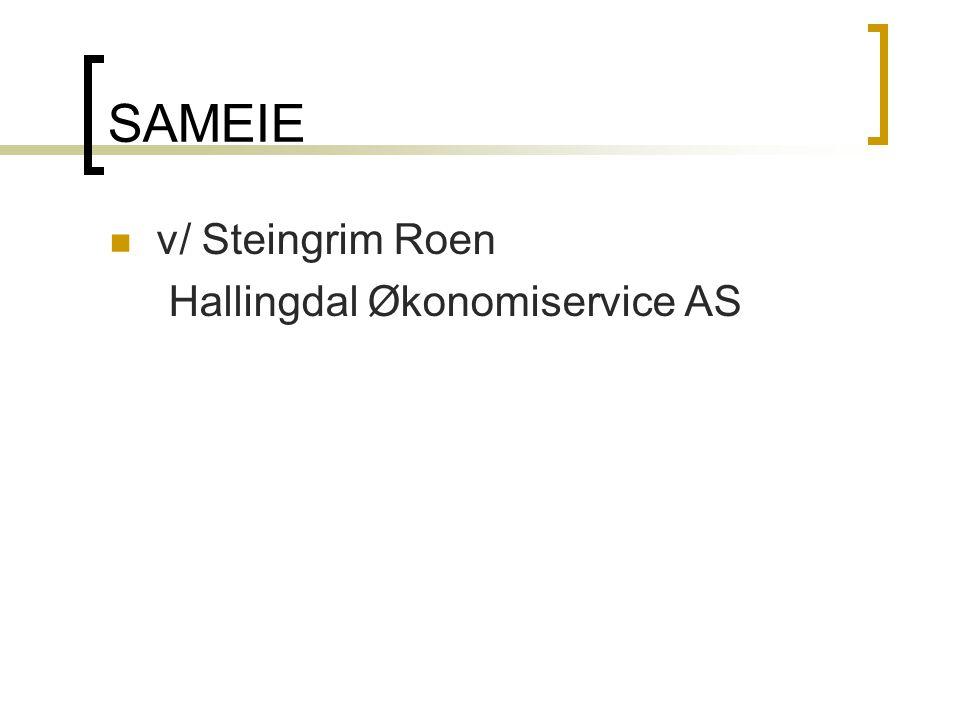 SAMEIE  v/ Steingrim Roen Hallingdal Økonomiservice AS