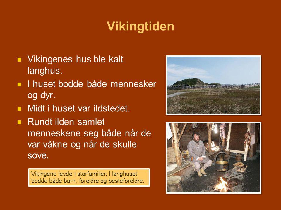 Vikingtiden   Vikingenes hus ble kalt langhus.   I huset bodde både mennesker og dyr.   Midt i huset var ildstedet.   Rundt ilden samlet menne