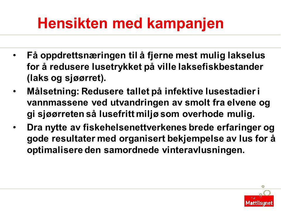 Hensikten med kampanjen •Få oppdrettsnæringen til å fjerne mest mulig lakselus for å redusere lusetrykket på ville laksefiskbestander (laks og sjøørre