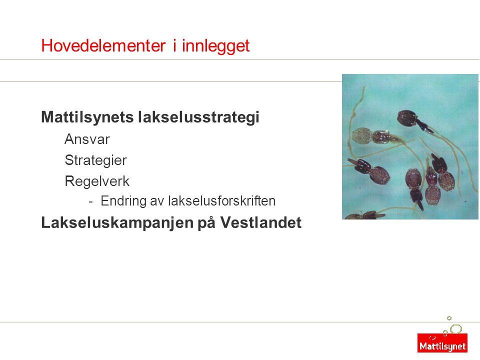 Hovedelementer i innlegget Mattilsynets lakselusstrategi Ansvar Strategier Regelverk -Endring av lakselusforskriften Lakseluskampanjen på Vestlandet