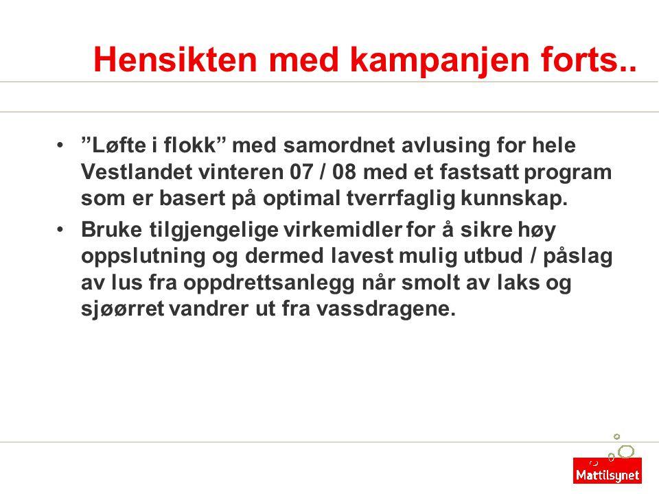 """Hensikten med kampanjen forts.. •""""Løfte i flokk"""" med samordnet avlusing for hele Vestlandet vinteren 07 / 08 med et fastsatt program som er basert på"""