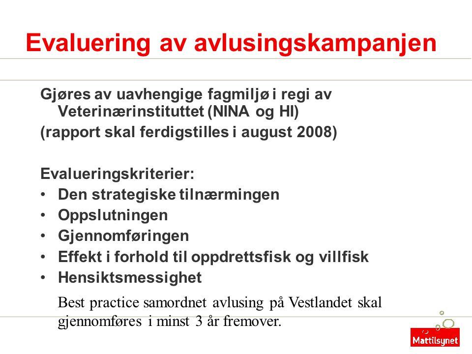 Evaluering av avlusingskampanjen Gjøres av uavhengige fagmiljø i regi av Veterinærinstituttet (NINA og HI) (rapport skal ferdigstilles i august 2008)