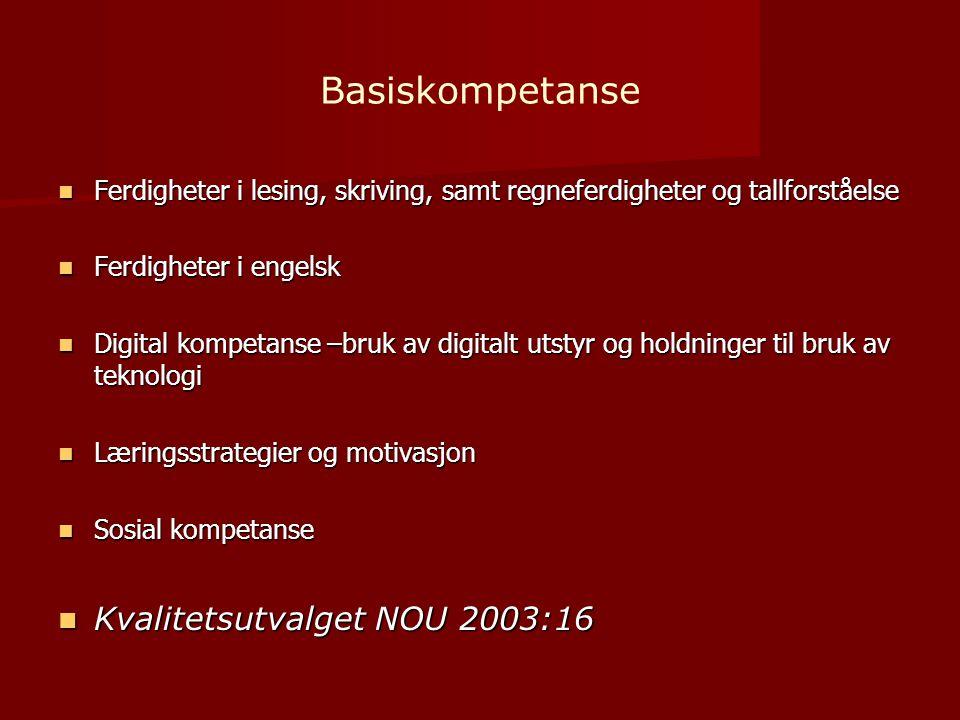 Basiskompetanse  Ferdigheter i lesing, skriving, samt regneferdigheter og tallforståelse  Ferdigheter i engelsk  Digital kompetanse –bruk av digitalt utstyr og holdninger til bruk av teknologi  Læringsstrategier og motivasjon  Sosial kompetanse  Kvalitetsutvalget NOU 2003:16