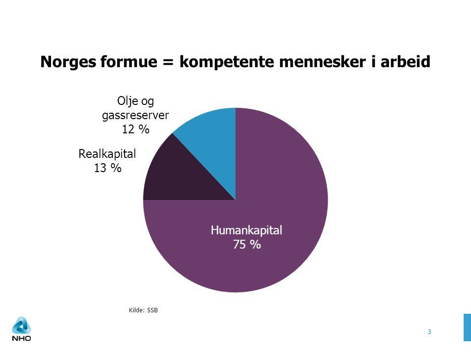 Norges formue = kompetente mennesker i arbeid 3 Kilde: SSB