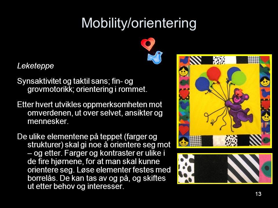 13 Mobility/orientering Leketeppe Synsaktivitet og taktil sans; fin- og grovmotorikk; orientering i rommet. Etter hvert utvikles oppmerksomheten mot o