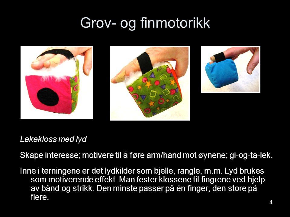 4 Grov- og finmotorikk Lekekloss med lyd Skape interesse; motivere til å føre arm/hand mot øynene; gi-og-ta-lek. Inne i terningene er det lydkilder so
