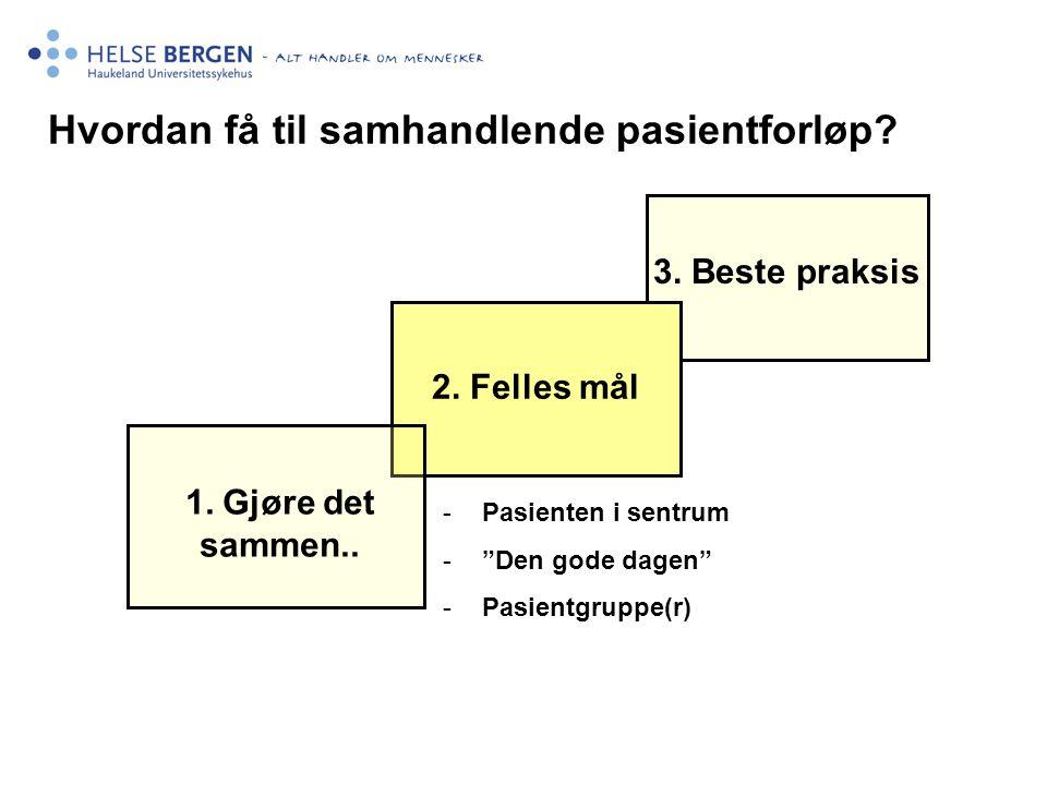 """1. Gjøre det sammen.. 2. Felles mål Hvordan få til samhandlende pasientforløp? 3. Beste praksis -Pasienten i sentrum -""""Den gode dagen"""" -Pasientgruppe("""