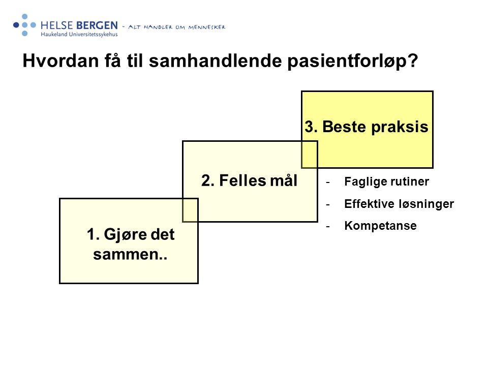 1. Gjøre det sammen.. 2. Felles mål Hvordan få til samhandlende pasientforløp? 3. Beste praksis -Faglige rutiner -Effektive løsninger -Kompetanse