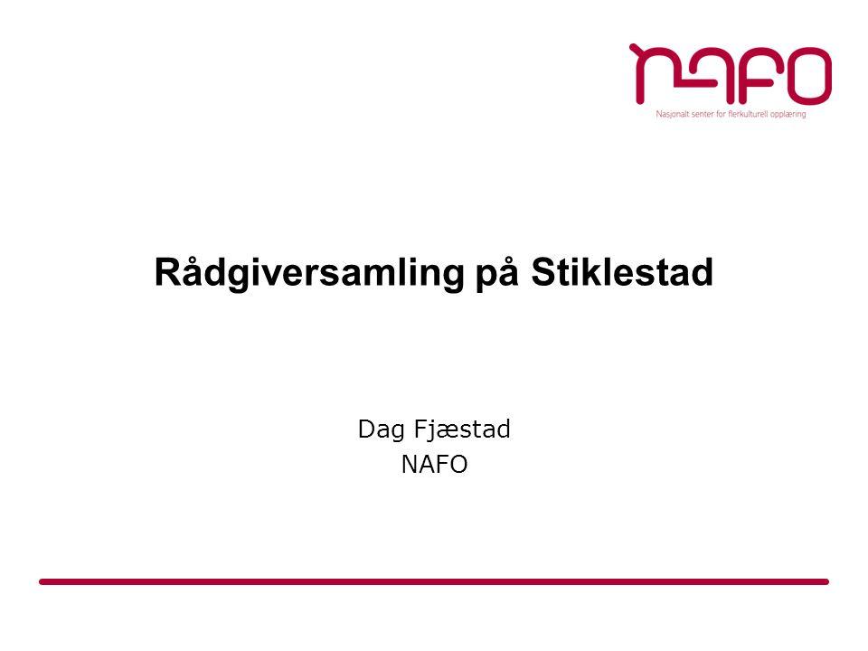 Dag Fjæstad NAFO Rådgiversamling på Stiklestad