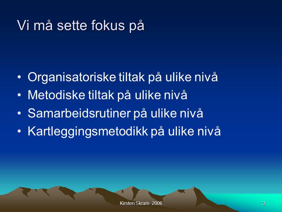 Kirsten Skram 20063 Vi må sette fokus på •Organisatoriske tiltak på ulike nivå •Metodiske tiltak på ulike nivå •Samarbeidsrutiner på ulike nivå •Kartl