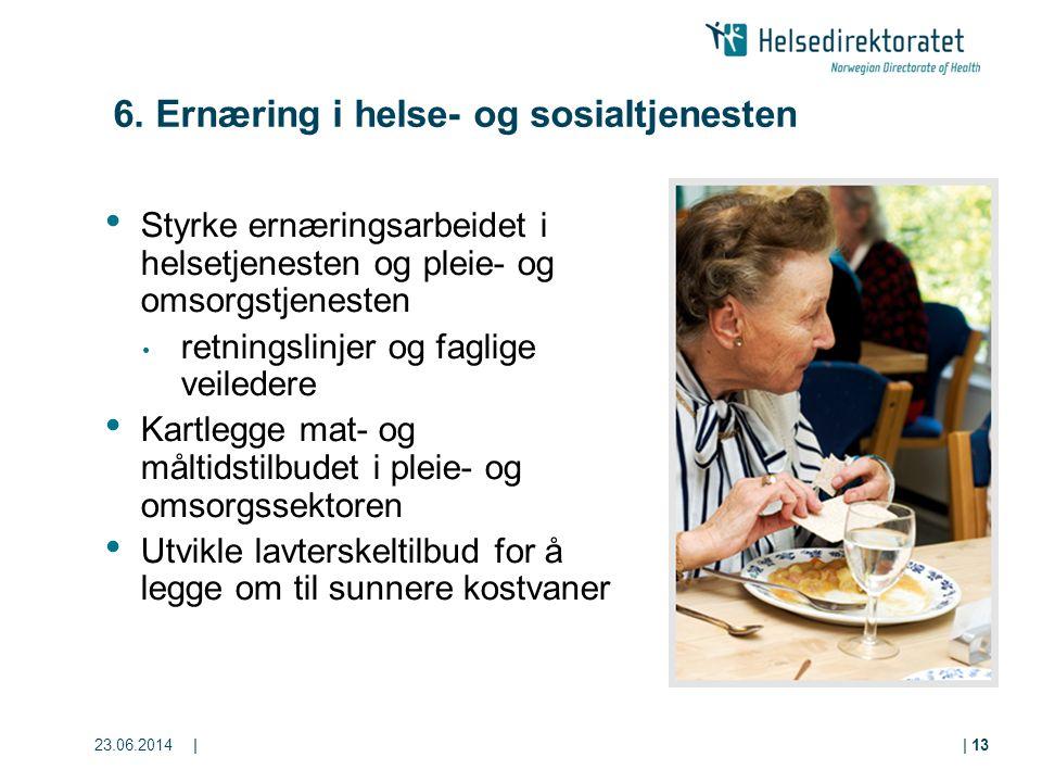 23.06.2014|| 13 6. Ernæring i helse- og sosialtjenesten • Styrke ernæringsarbeidet i helsetjenesten og pleie- og omsorgstjenesten • retningslinjer og
