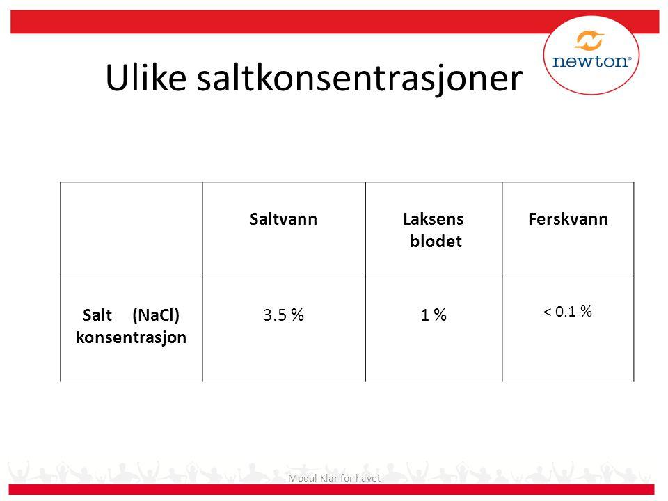 Ulike saltkonsentrasjoner Modul Klar for havet SaltvannLaksens blodet Ferskvann Salt (NaCl) konsentrasjon 3.5 %1 % < 0.1 %