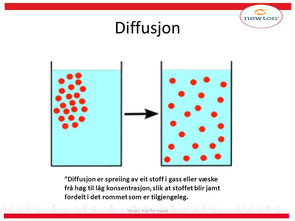 """Diffusjon Modul Klar for havet """"Diffusjon er spreiing av eit stoff i gass eller væske frå høg til låg konsentrasjon, slik at stoffet blir jamt fordelt"""