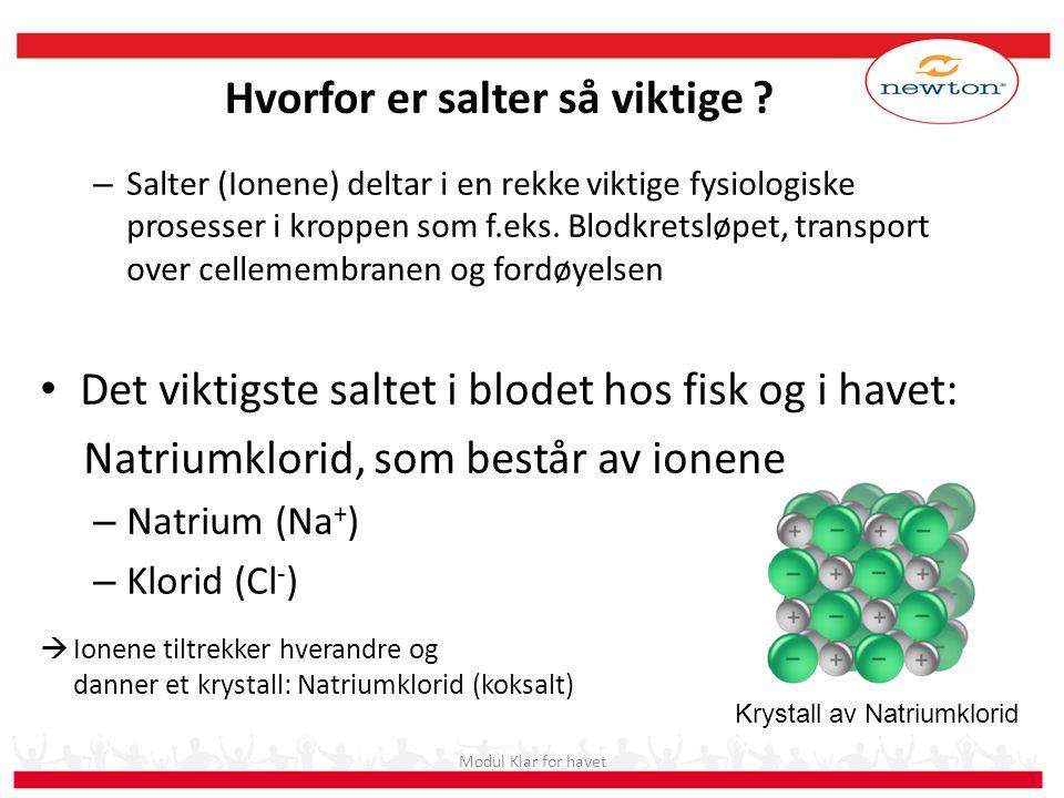 – Salter (Ionene) deltar i en rekke viktige fysiologiske prosesser i kroppen som f.eks. Blodkretsløpet, transport over cellemembranen og fordøyelsen •