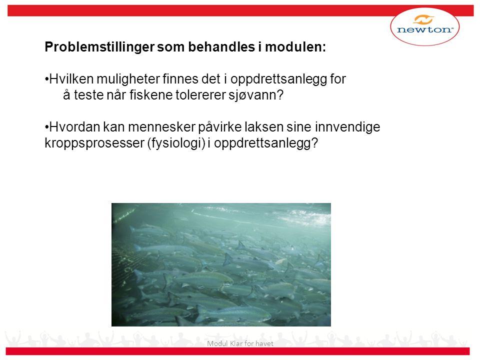 Modul Klar for havet Problemstillinger som behandles i modulen: •Hvilken muligheter finnes det i oppdrettsanlegg for å teste når fiskene tolererer sjø