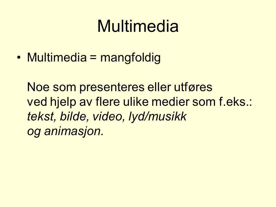 Multimedia •Multimedia = mangfoldig Noe som presenteres eller utføres ved hjelp av flere ulike medier som f.eks.: tekst, bilde, video, lyd/musikk og a