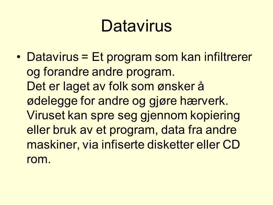 Datavirus •Datavirus = Et program som kan infiltrerer og forandre andre program. Det er laget av folk som ønsker å ødelegge for andre og gjøre hærverk