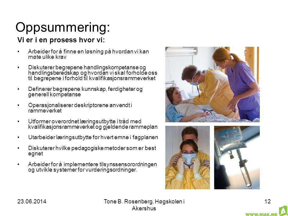 23.06.2014Tone B. Rosenberg, Høgskolen i Akershus 12 Oppsummering: Vi er i en prosess hvor vi: •Arbeider for å finne en løsning på hvordan vi kan møte