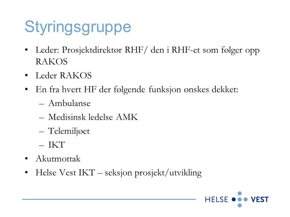 Styringsgruppe •Leder: Prosjektdirektør RHF/ den i RHF-et som følger opp RAKOS •Leder RAKOS •En fra hvert HF der følgende funksjon ønskes dekket: –Amb