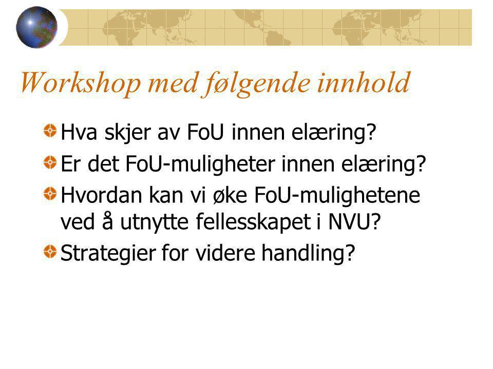 Strategier for videre handling - 2 Et 'fagforum' for å overvåke muligheter til FoU-prosjekter innen elæring.