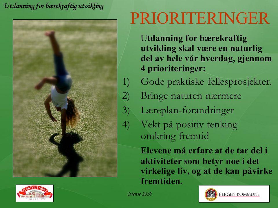 Odense 2010 PRIORITERINGER Utdanning for bærekraftig utvikling skal være en naturlig del av hele vår hverdag, gjennom 4 prioriteringer: 1)Gode praktis