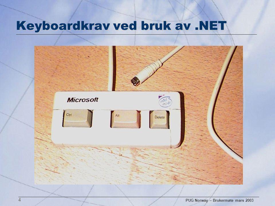 PUG Norway – Brukermøte mars 2003 5 Realiteter n I flere og flere caser er det et KRAV å modernisere brukergrensesnittet n Samtidig er det ønske om å gjenbruke forretningslogikken – pga.