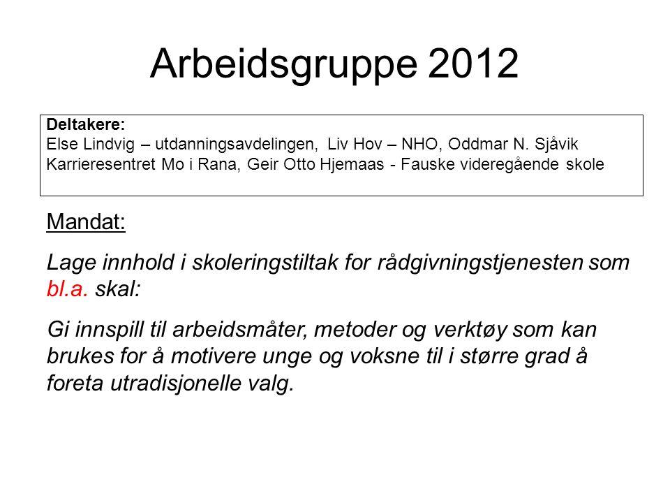 Arbeidsgruppe 2012 Deltakere: Else Lindvig – utdanningsavdelingen, Liv Hov – NHO, Oddmar N. Sjåvik Karrieresentret Mo i Rana, Geir Otto Hjemaas - Faus