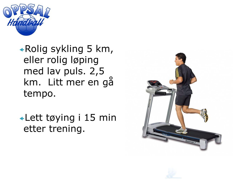  Rolig sykling 5 km, eller rolig løping med lav puls. 2,5 km. Litt mer en gå tempo.  Lett tøying i 15 min etter trening.