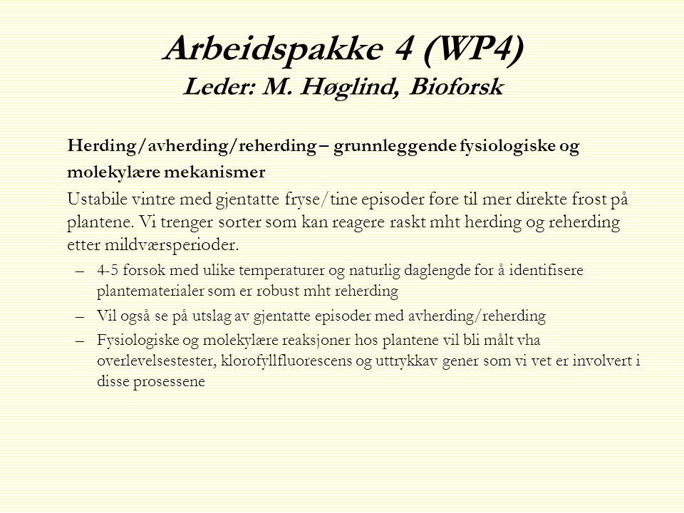 Arbeidspakke 4 (WP4) Leder: M.