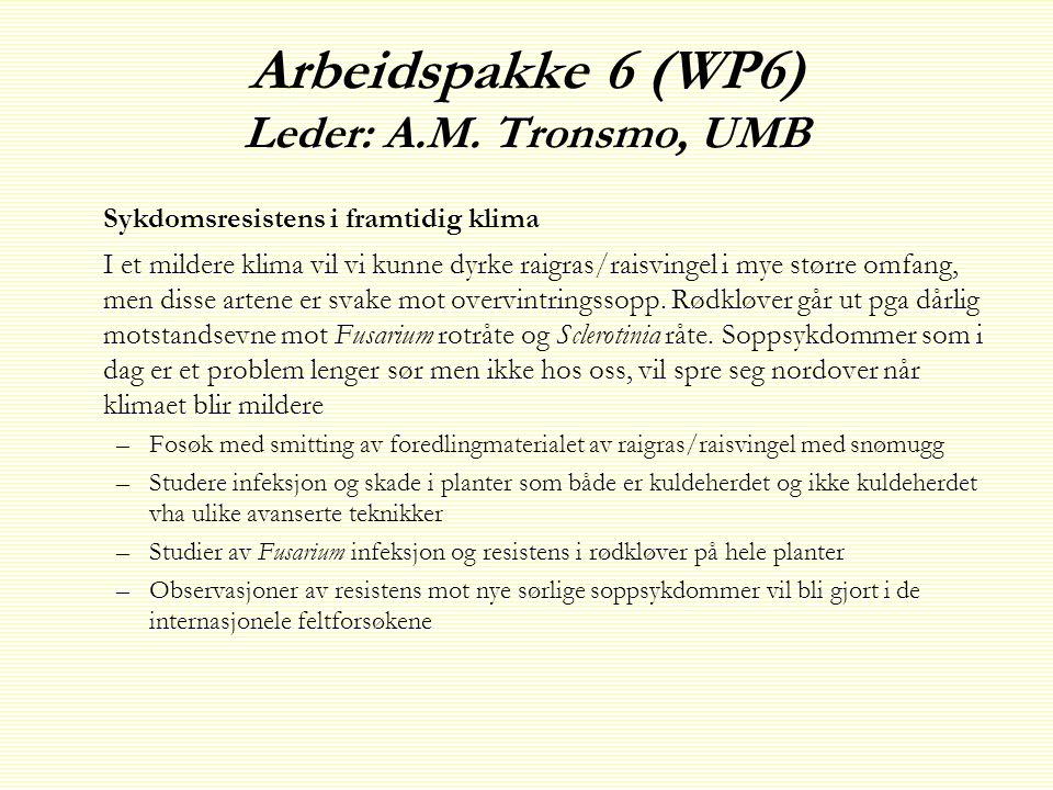 Arbeidspakke 6 (WP6) Leder: A.M.